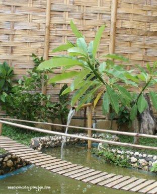 zen pond
